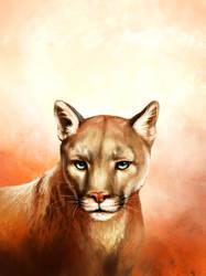 Puma Rar by KimDingwall