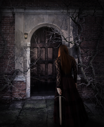 Into the Dungeon by Vampiric-Time-Lord