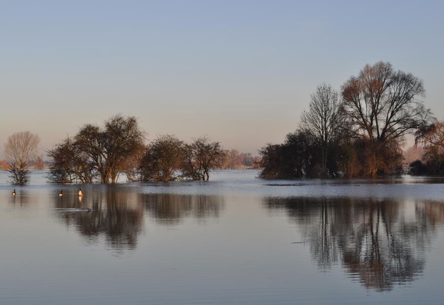 River Rhine January 2011 3 by jynto
