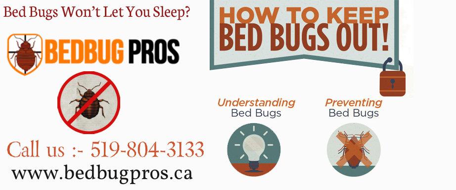 28 bed bug service getting infestation service