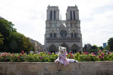 A la memoire de Notre-Dame de Paris