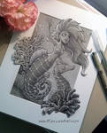 Mermaid 5