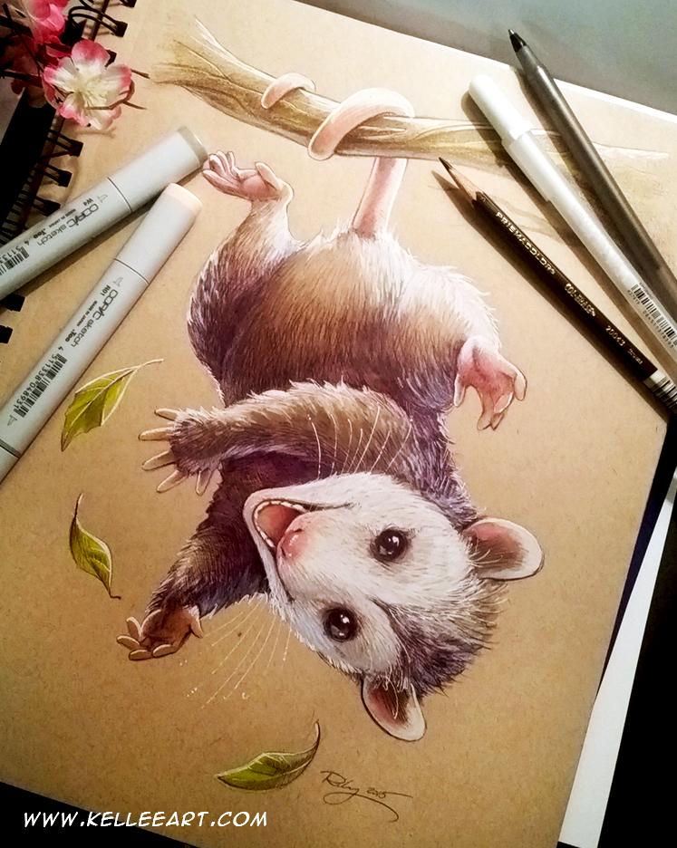 Possum commission by KelleeArt