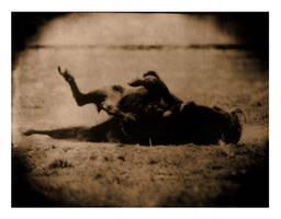 The Last Buffalo Transfer by dogeatdog5