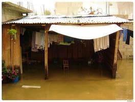 Flood 7 by levhita