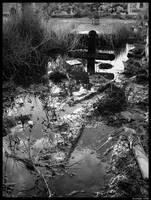 Flooded tomb by levhita