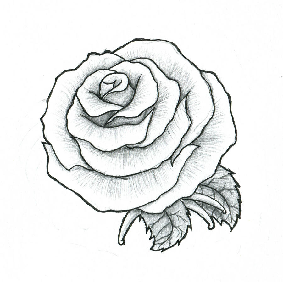 rose maybe a fist tattoo by pulverisedfetus on deviantart. Black Bedroom Furniture Sets. Home Design Ideas