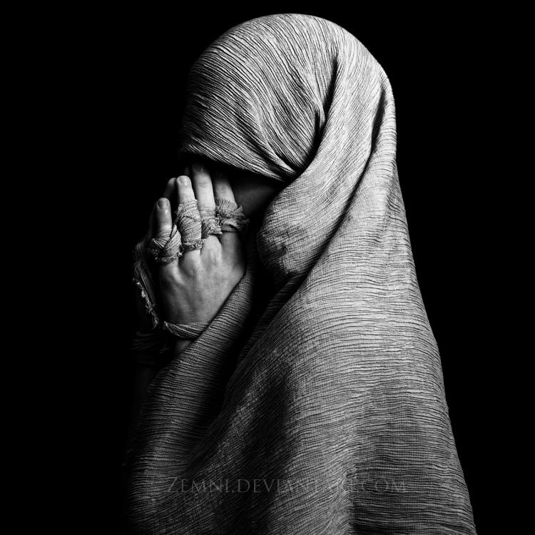 Veiled by Zemni