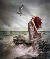 The Feather by SuzieKatz