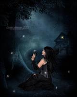 Hazy Night's Dream by SuzieKatz