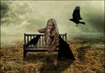 Raven Whisperer