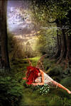 Fairy and the Fireflies