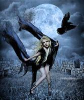 The Blackbird by SuzieKatz