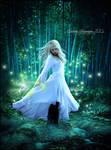One Mystical Night
