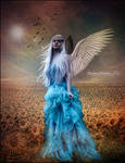 Angel of the Morn