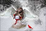 The Winter Angel