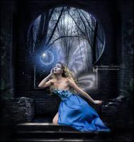 Fairy Fascination by SuzieKatz