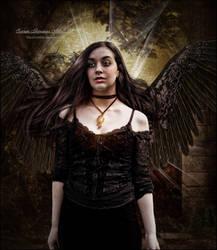 Dark Angels Reflection by SuzieKatz