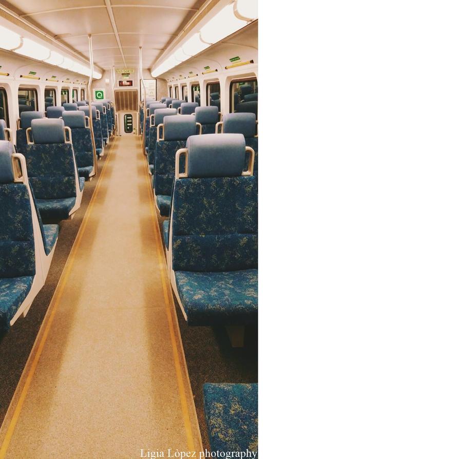 Go Train by Mitsuki16