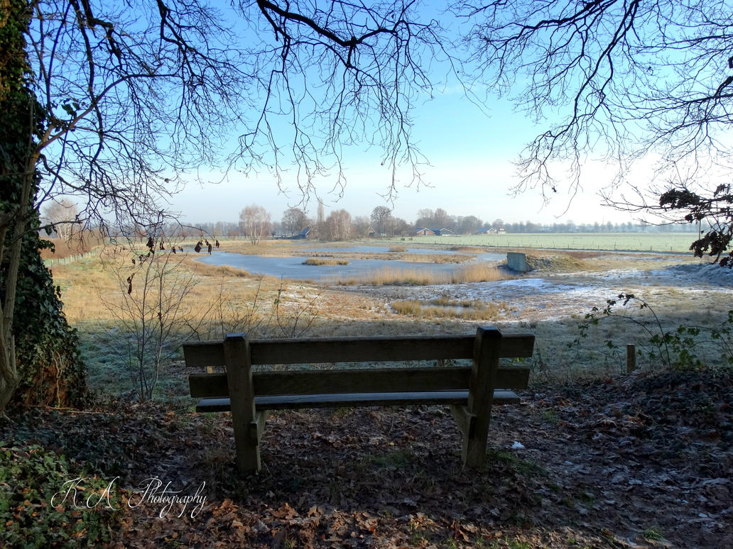 The bench by Buble