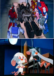 Pinky and The Brain Sad Over Optimus's Death