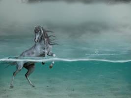 Manip  Power of the Ocean