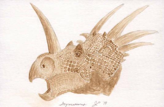 Paleospresso: Styracosaurus