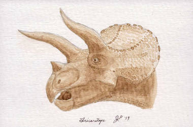 Paleospresso: Triceratops
