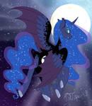 Night - Luna