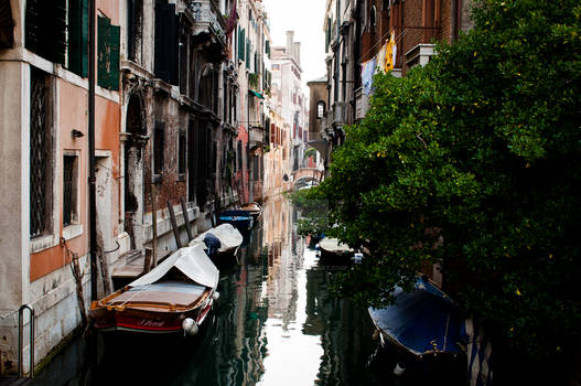 Venice #1