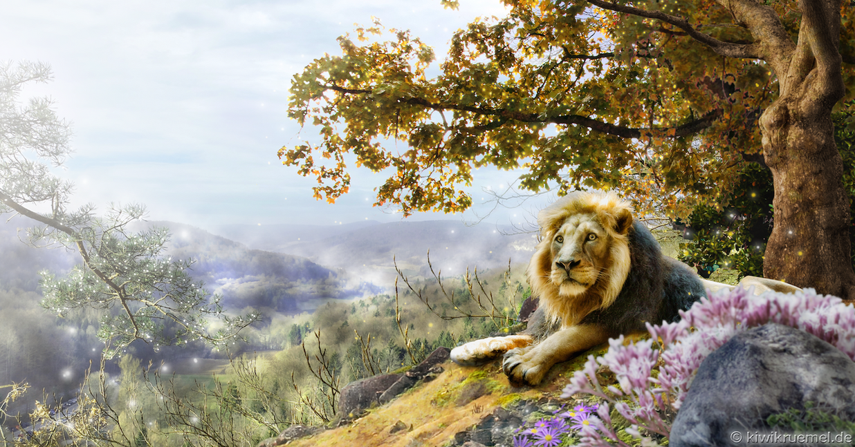 Lion King by kiwikruemel
