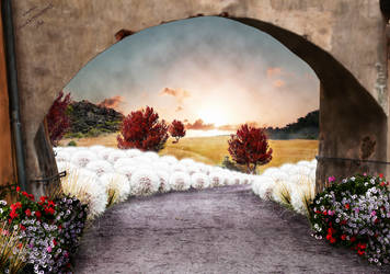 follow the path by kiwikruemel