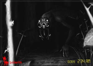 Night Vision Camera - SPEEDPAINT