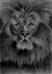 His Royal Majesty