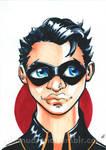 Robin the Boy Wonder