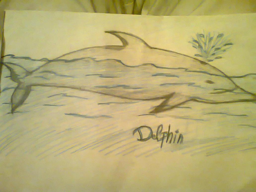 Delphin by Enike91