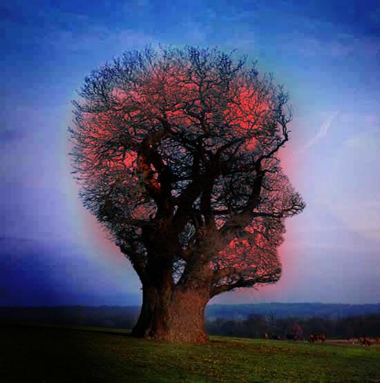 Pink Floyd 2 by Jaki-0