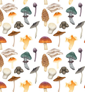 Mushroom Pattern Play