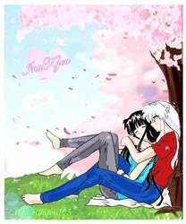 Cherry Blossom + Colors