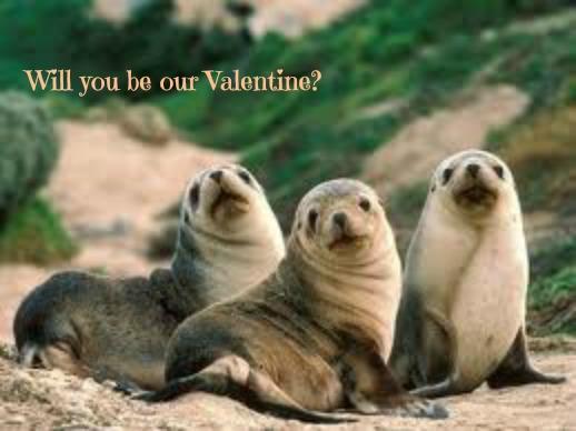 Valentine by kaceymears