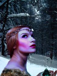 Winter's Jewel by Sinneca