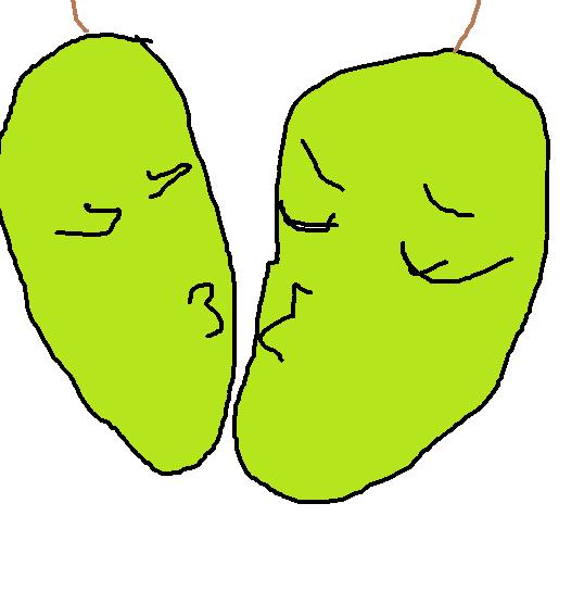 Pair Of Pears by TheSuperRainbowAJ