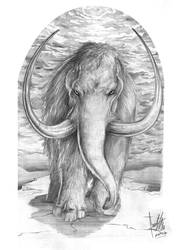 Mammoth Tattoo Design by caiojhonson
