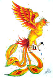 Phoenix by caiojhonson