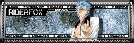 Firma Bleach by FoxFray