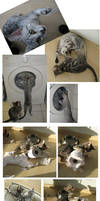 Kittychaos