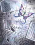 always follow butterflies