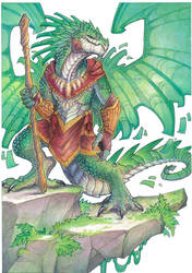 shadow dragon by drachenmagier