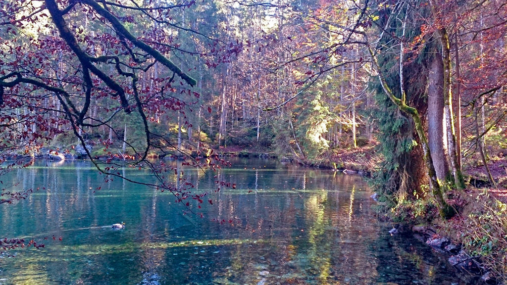 The secret lake in an automn forest by AlexLehner