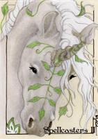 Spellcasters II Sketch Card - Darla Ecklund 2 by Pernastudios